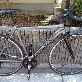 🚴cannondale caad12