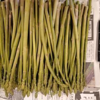 尾花沢産アスパラ サイズ色々 1.5kg