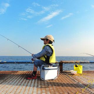 釣りがしたい。釣りが。