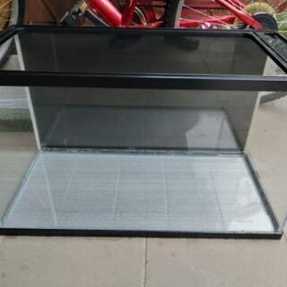 60cm水槽 スタンダードサイズ ガラス蓋 おまけ ②