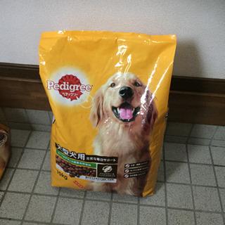 ペディグリー大型犬用大粒 10kg+おまけ付き