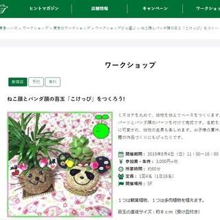東急ハンズ新宿店で猫顔とパンダ顔の苔玉ワークショップ開催。