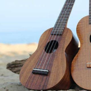 夏のウクレレ教室開講🎉楽器プレゼントあり🎶