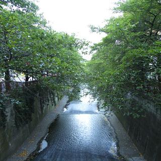 7/20土曜 午前11時半~@池尻大橋 資料仕分バイト