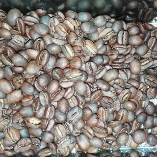 【coffee beans laboratory】世界の珍しい豆を...