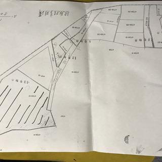 旧板取村 山林他の土地と交換可、約700坪 杉林 ソーラー用地に...