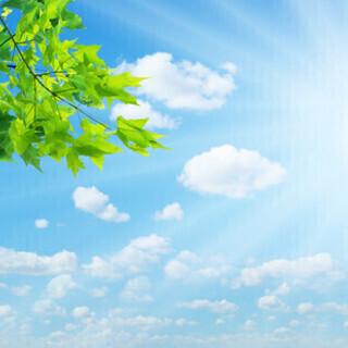 あなたの未来は明るいですか?★ブッダの知恵に学ぶ、幸せな未来への道