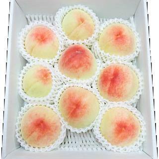 【旬のフルーツ】白桃 2キロご家庭用