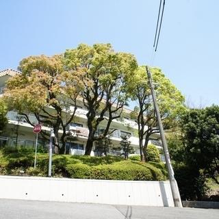 ◆ロイヤルヴィラ苦楽園3号棟◆最上階、西宮から芦屋にかけての景色...