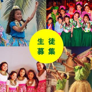 【新規開講・横浜・子供フラダンス】夏休み体験レッスン参加者募集