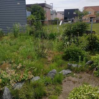 【草刈り/1㎡450円!最安値に自信!お庭作業お任せ下さい!】