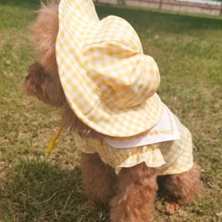 犬洋服は、水兵さん、スモック、幼稚園、XSサイズ、帽子付き^_^