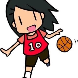 バスケメンバーを募集します! どなたでも参加してください!