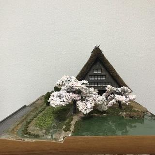 フルスクラッチ 桜香る合掌造りの古民家1/50