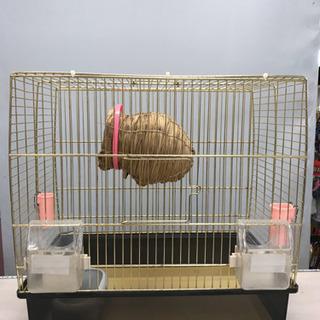 鳥かご 小鳥 ☆79767 水・餌鉢・巣付