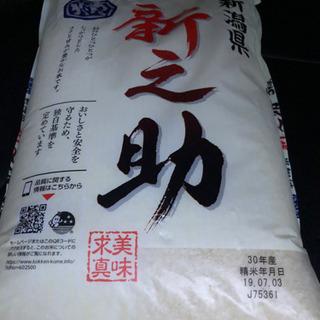 新潟米 新之助 5キロ精米