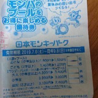 早い者勝ち❗日本モンキーパーク 割引券