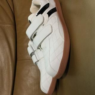 安全靴 24.5cm