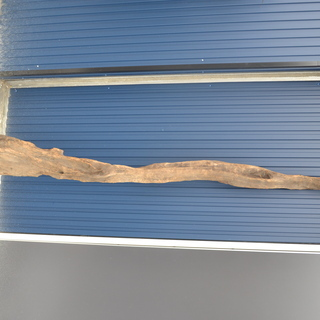M◎大きな流木 インテリア/装飾などに 大型サイズ