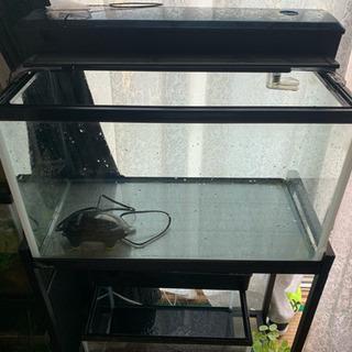 水槽台セット60cm水槽