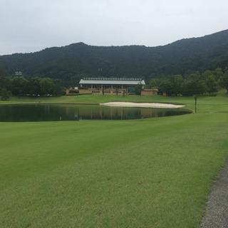 平日 水曜日 ゴルフラウンド出来る方