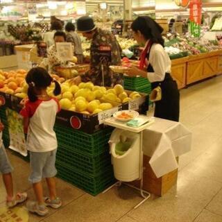 交通費全額支給☆☆スーパーの試食販売
