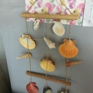 インテリアに貝殻の飾り