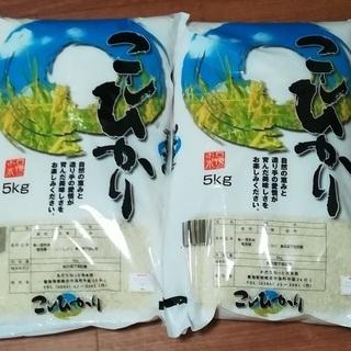 30年度 米 コシヒカリ 10kg
