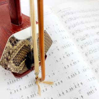 二胡教室【初心者歓迎】大人の音楽教室 ※オンラインレッスン対応