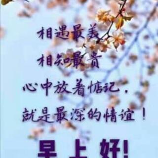 国際結婚、中国人女性、大募集、女性全て無料