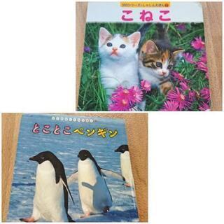 写真絵本 2冊セット『こねこ』『とことこペンギン』