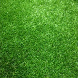お買い得!人工芝1m×5m