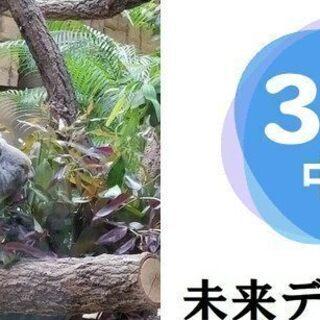 ♡恋活♡30代40代前半中心♡8月18日(日)17時30分♡夜の...