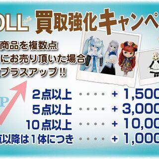 ドール出張買取情報~買取強化キャンペーン&買取リスト1~