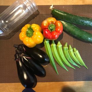 保冷バック付き野菜