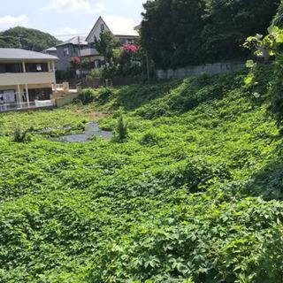 ☆★ 北久里浜駅すぐ 草刈&刈り草集め&刈り草積込 ★☆
