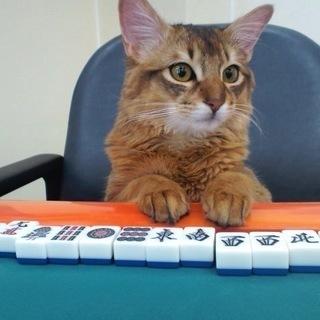 【初心者大歓迎】レディース麻雀体験レッスン