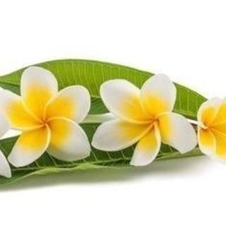 ~ハワイアンアロマ調香講座~ 自分だけのハワイの香りを創…
