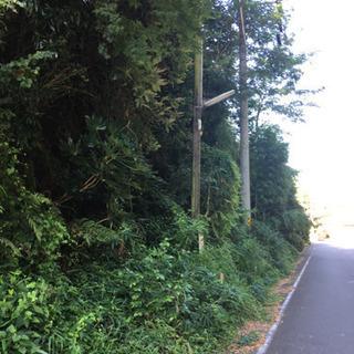 福島県いわき市 草刈り アルバイト 残り枠あと‼️ 2名募集 急募‼️