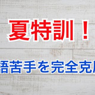 【受験生向け】2週間で英語苦手克服する英語集中特訓!
