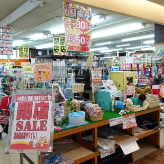 【閉店SALE】ペットショップ アルファ 閉店セール開催中!