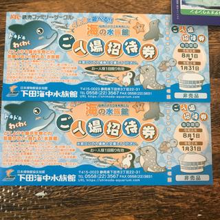 下田海中水族館  チケット2枚セット