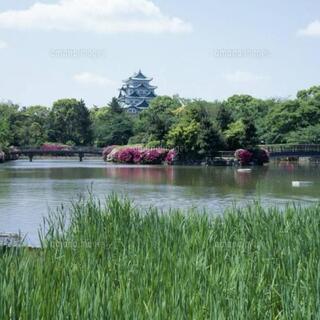 ♪名城公園でピクニックヨガとランチ会♪