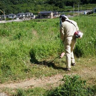 草刈りいたします。
