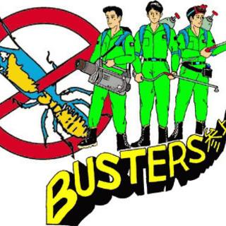 沖縄でシロアリ駆除なら(有)バスターズにお任せ下さい。
