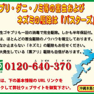 沖縄でゴキブリ等の害虫駆除は(有)バスターズにお任せ下さい。