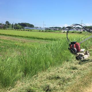 田んぼの草刈り致します