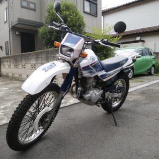 東京より セロー225 4JG5