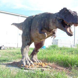 ☆値引き交渉可能です。ティラノサウルスの恐竜です。横約6m高さ2...