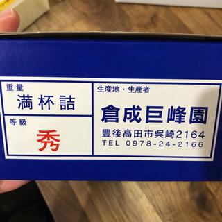 巨峰箱入り - 北九州市